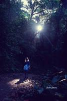 Alice in Wonderland_Lost by SilverPhoenixVN