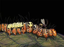 The Wasp That Brainwashed the Caterpillar by V-L-A-D-I-M-I-R