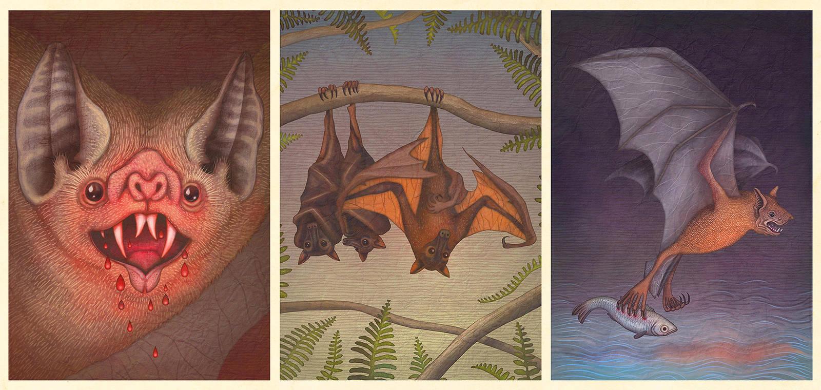 Bats by V-L-A-D-I-M-I-R