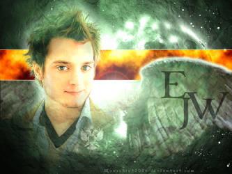 Em's Man Collage by MouseBrat
