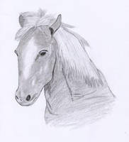My first horse by oswin-drawings