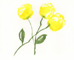 Simple roses by oswin-drawings