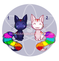 Rainbow Kitties Adoptables [ CLOSED ] by XenoniAdopts