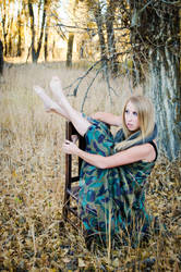 Shades of Fall II by LexieJensen