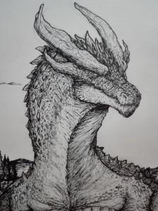 SpaceDragon14's Profile Picture