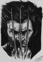 wolverine portrait by darkartistdomain