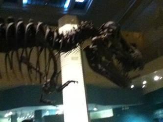 T. rex 3 by CaptainEdwardTeague