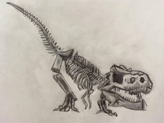 Rexy from Night at the Museum by CaptainEdwardTeague