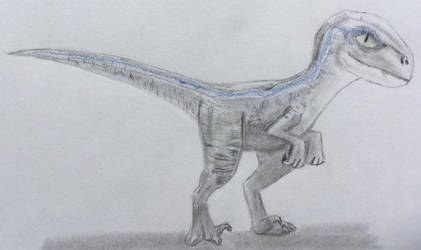 Baby Blue from Jurassic World Redrawn by CaptainEdwardTeague