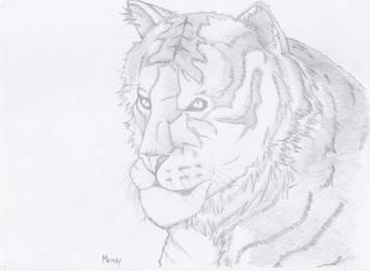 Animals: Tiger (?) by DarkLadyMony