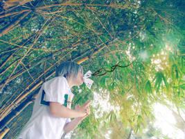 Natsume Yuujinchou 1 by H-I-T-O-M-I