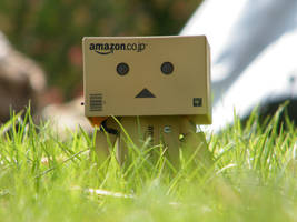 danbo in grass II by filsru