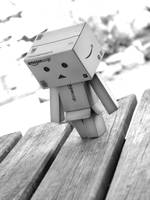 Danbo lost and Alone by filsru