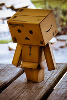Danbo  Walking by filsru