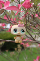 Pastel Owl in the Park by Dellessanna