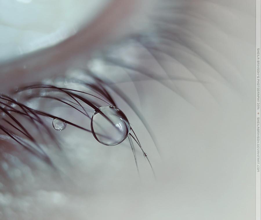 Lower Eyelash by SheilaMBrinson