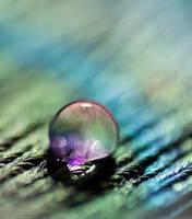 Purple Magic by SheilaMBrinson