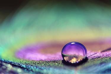 Purple Eye by SheilaMBrinson