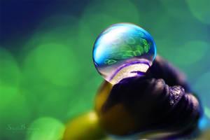 A Drops Universe by SheilaMBrinson