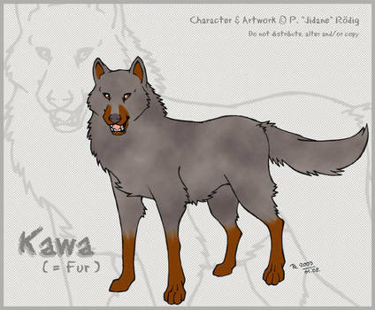 WR Original Character - Kawa by jidane