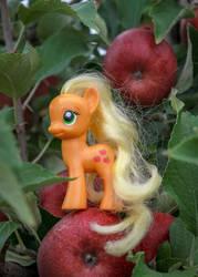 Apple Jack at the Apple Farm by AquilaTEagle