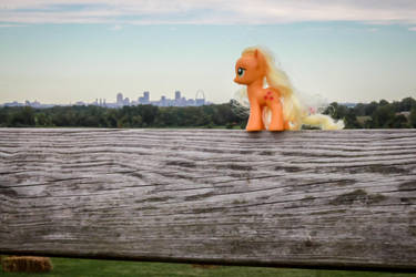 Apple Jack Fence: Pts Comment Contest, Guess Where by AquilaTEagle