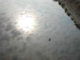 AmaNoGawa 'river of heaven' by BaroqueBobcat