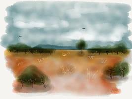 Outback by digitalchet