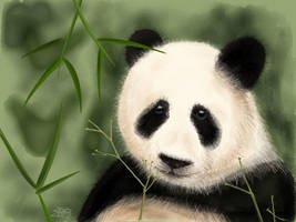 Sad Panda by digitalchet