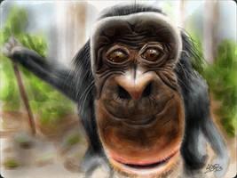 Bobo the Bonobo by digitalchet