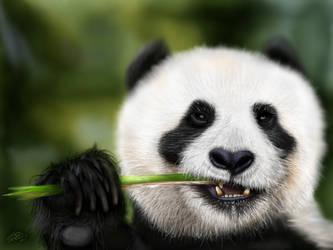 Munching Panda by digitalchet