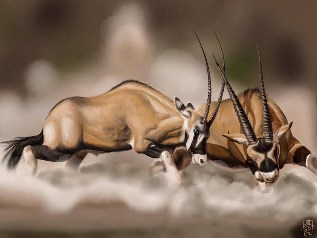 Scimitar-Horned Oryx Duel by digitalchet