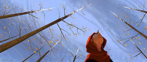 Winter Sky by erwinsart