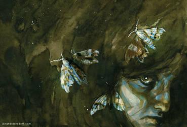 Moths by Checanty