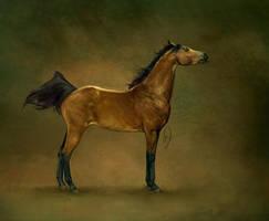 Le Cheval Arabe: Deux by howlinghorse