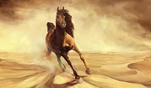 Sandfire Arab by howlinghorse