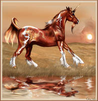 Stillcloud by howlinghorse