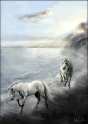Sea Spirals by howlinghorse