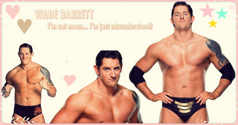 Wade Barrett Wallpaper by mistofstars