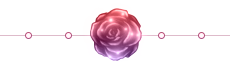 Rose Divider - Night Rose 1 - Large - Sparkles by EmpressOfRoses