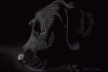 Black Doggy by Matsuemon