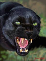 Black Panther portrait by Matsuemon