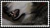 dog teeth stamp by goredoq