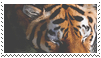 tiger stamp by goredoq
