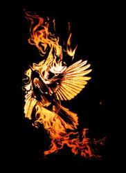 Burn Free by angrymikko