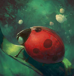 Mr Ladybird by angrymikko