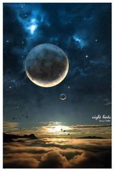 Night birds by jiwwy-ast