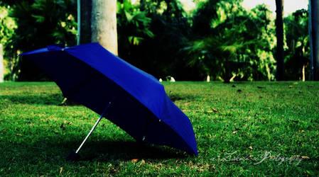 the umbrella...Day 291 by x-ZaKuLi-x