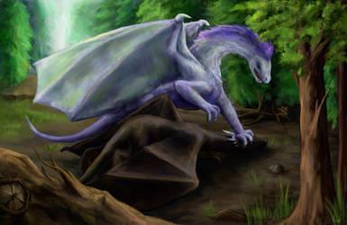Fighting Dragons by pokePiterr