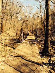 Danquart Trail by Ulfarnir